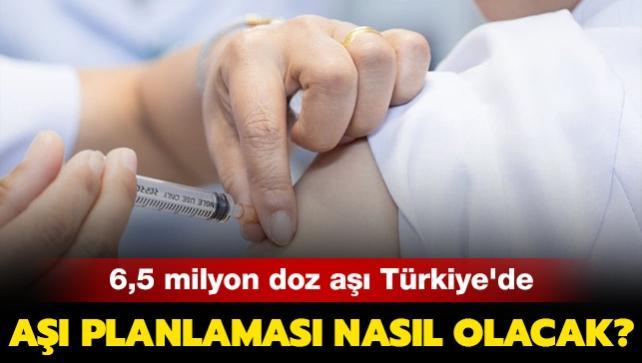 6,5 milyon doz aşı Türkiye'de: Aşı planlaması nasıl olacak?