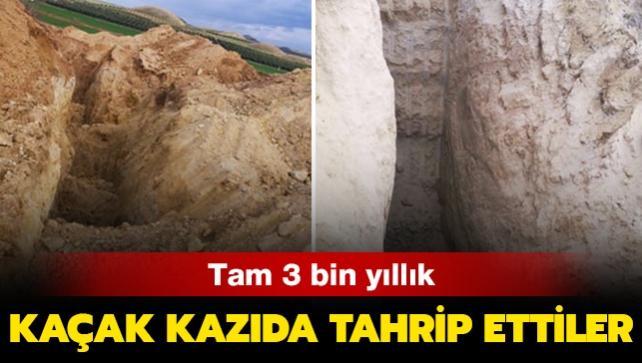 Tam 3 bin yıllık... Kaçak kazıda tahrip ettiler