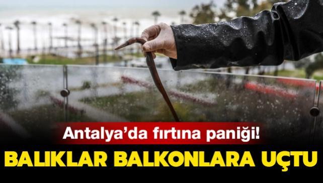 Antalya'da fırtına paniği: Balıklar evlerin balkonlarına uçtu