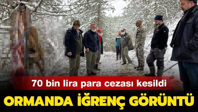 Son dakika haberleri... Ormanda iğrenç görüntü! 70 bin lira para cezası kesildi