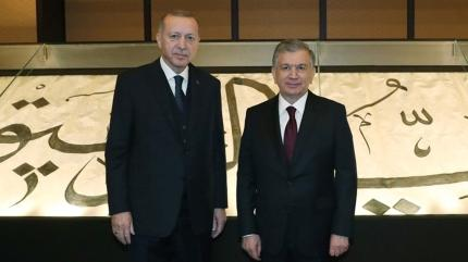 Başkan Erdoğan, Özbekistan Cumhurbaşkanı ile görüştü