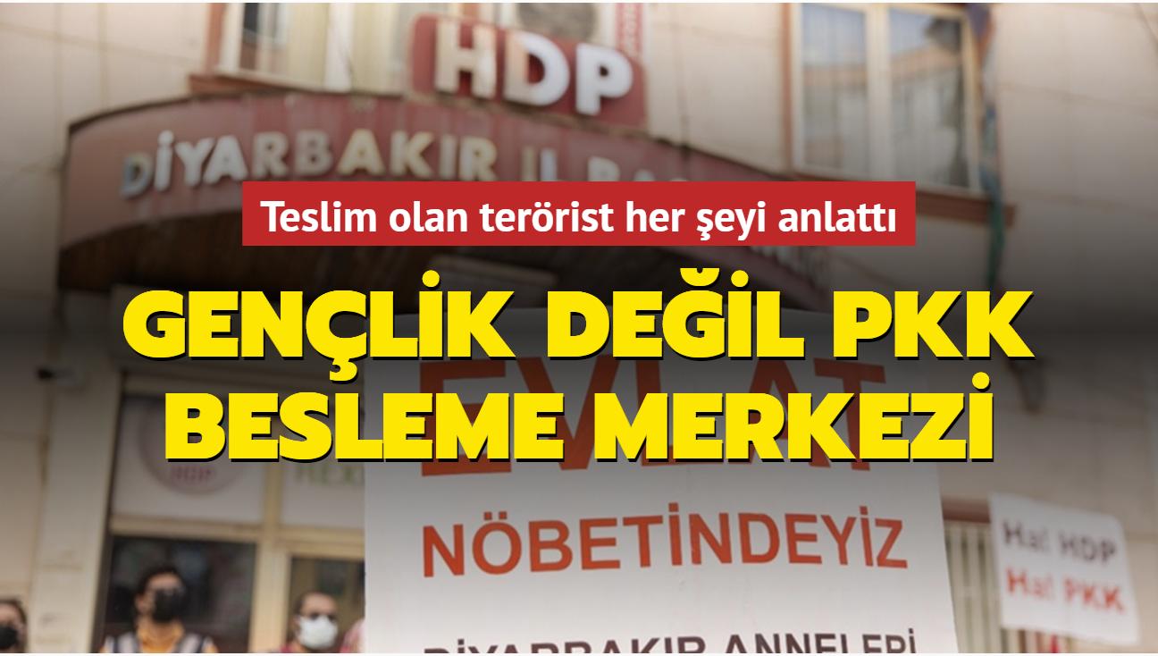 Teslim olan terörist, gençlerin örgüte çekilmesinde HDP Gençlik Meclislerinin rolünü anlattı