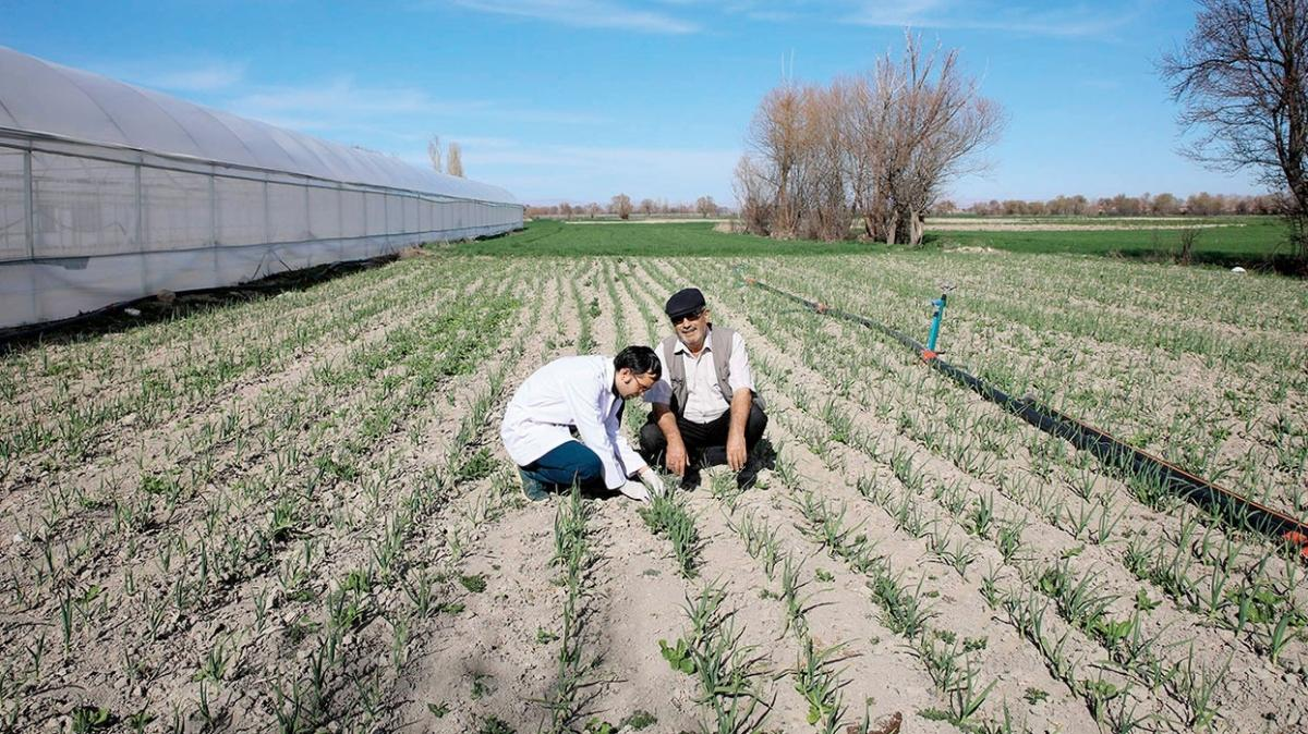 Büyükşehirden çiftçiye 277 milyon TL destek