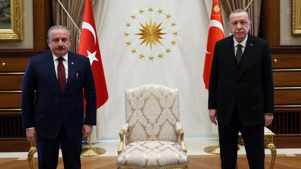 Başkan Erdoğan, TBMM Başkanı'nı kabul etti