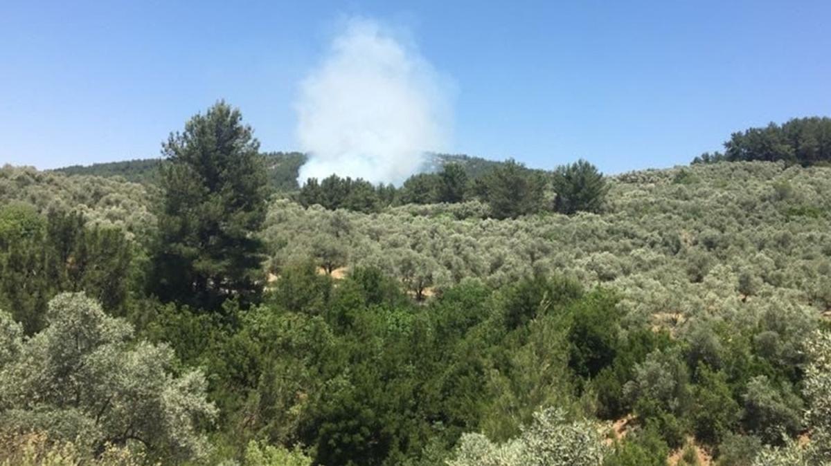 Muğla'da orman yanıyor