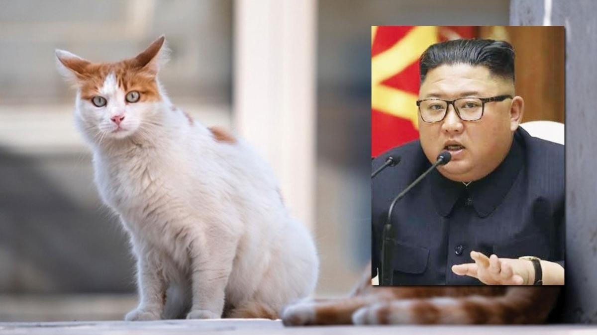 Kim Jong-un bu kez masum hayvanlara taktı