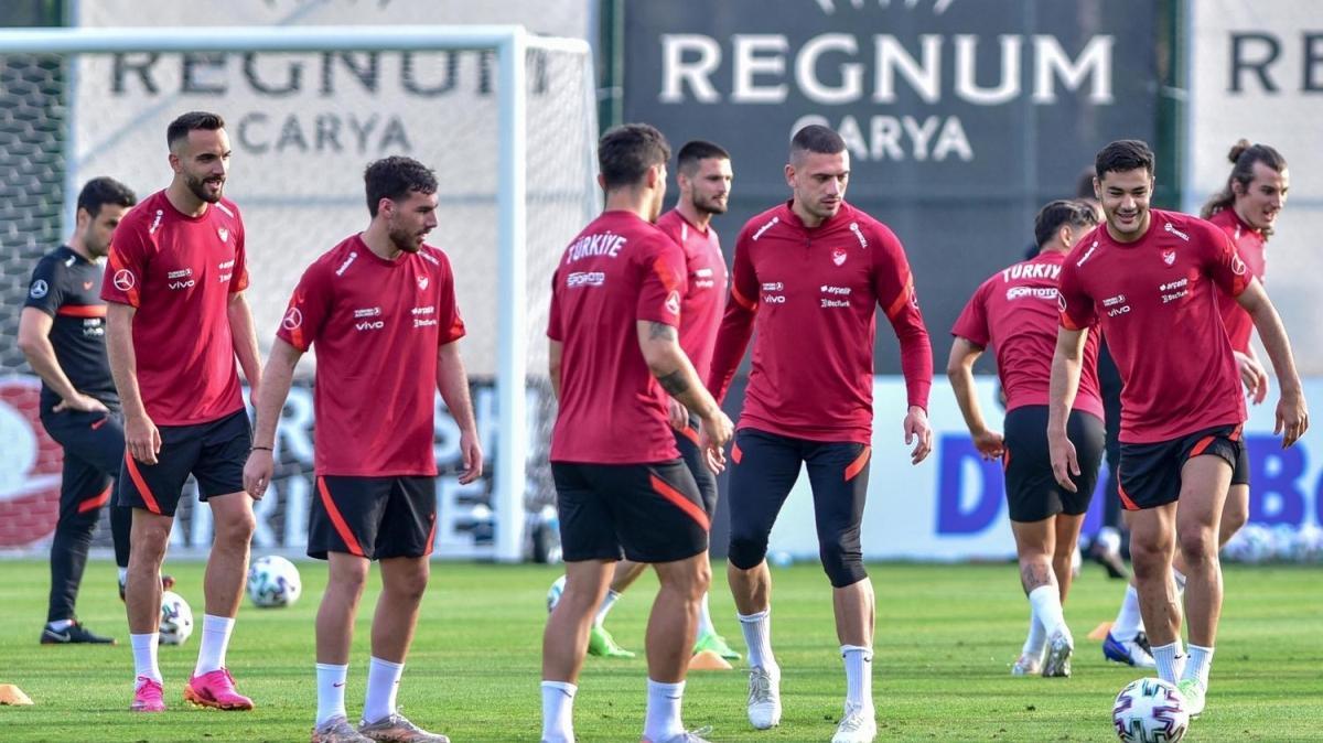 Milli Takım, Gine maçına hazır