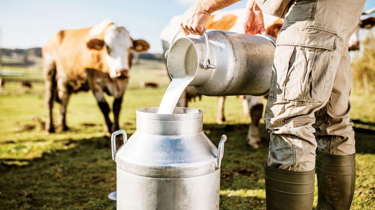 'Türkiye süt üretiminde etkili bir aktör olabilir'