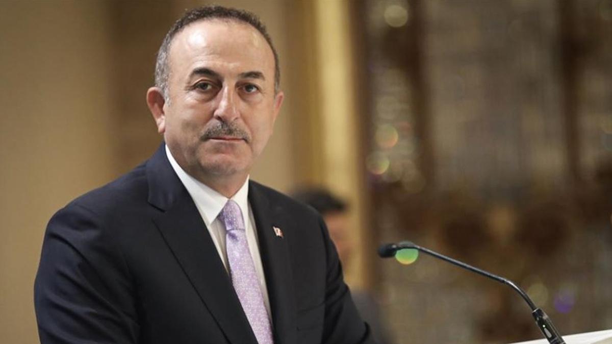 Dışişleri Bakanı Çavuşoğlu'ndan Fransız L'Opinion gazetesine demeç