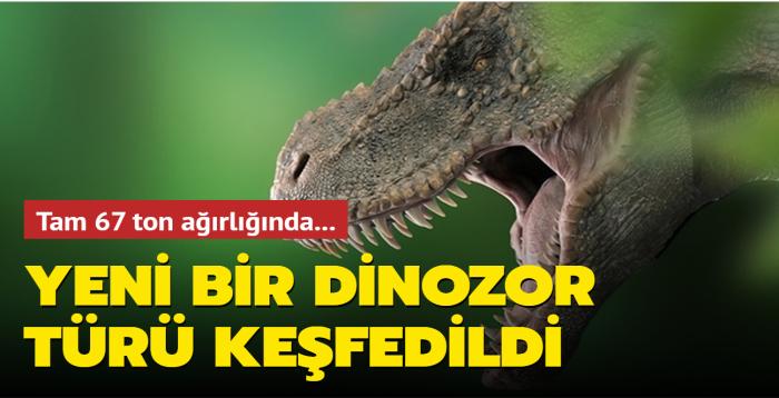 Dünyanın en büyük dinozor türlerinden biri keşfedildi: Tam 67 ton ağırlığında