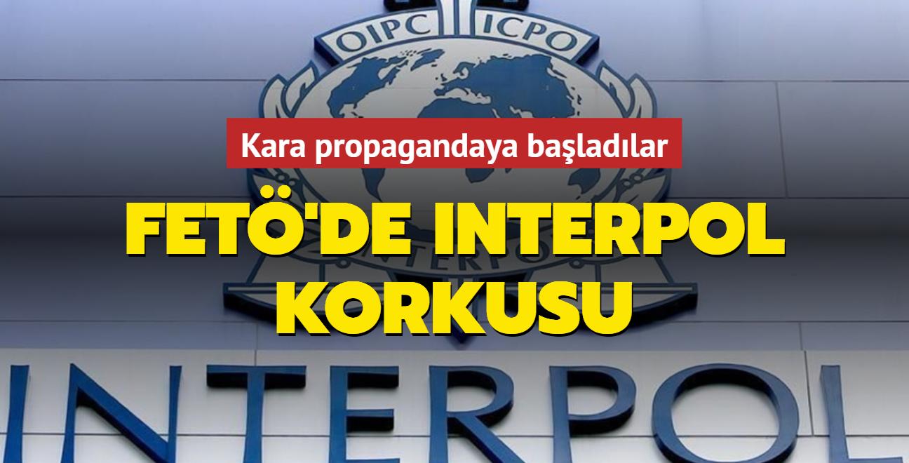 FETÖ'de INTERPOL korkusu