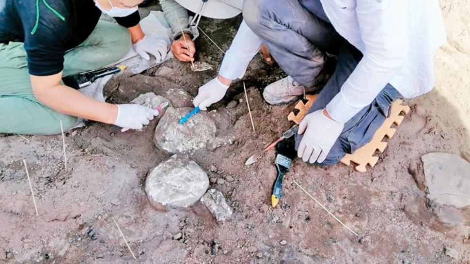 Arkeolojik kazılara 64 milyon TL destek