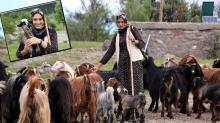 Hem sosyal medyadan hem de hayvancılıktan para kazanıyor