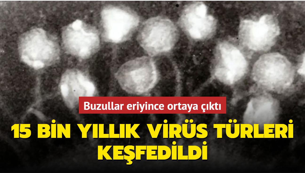 Buzulların erimesinin ardından 15 bin yıllık antik virüsler ortaya çıktı