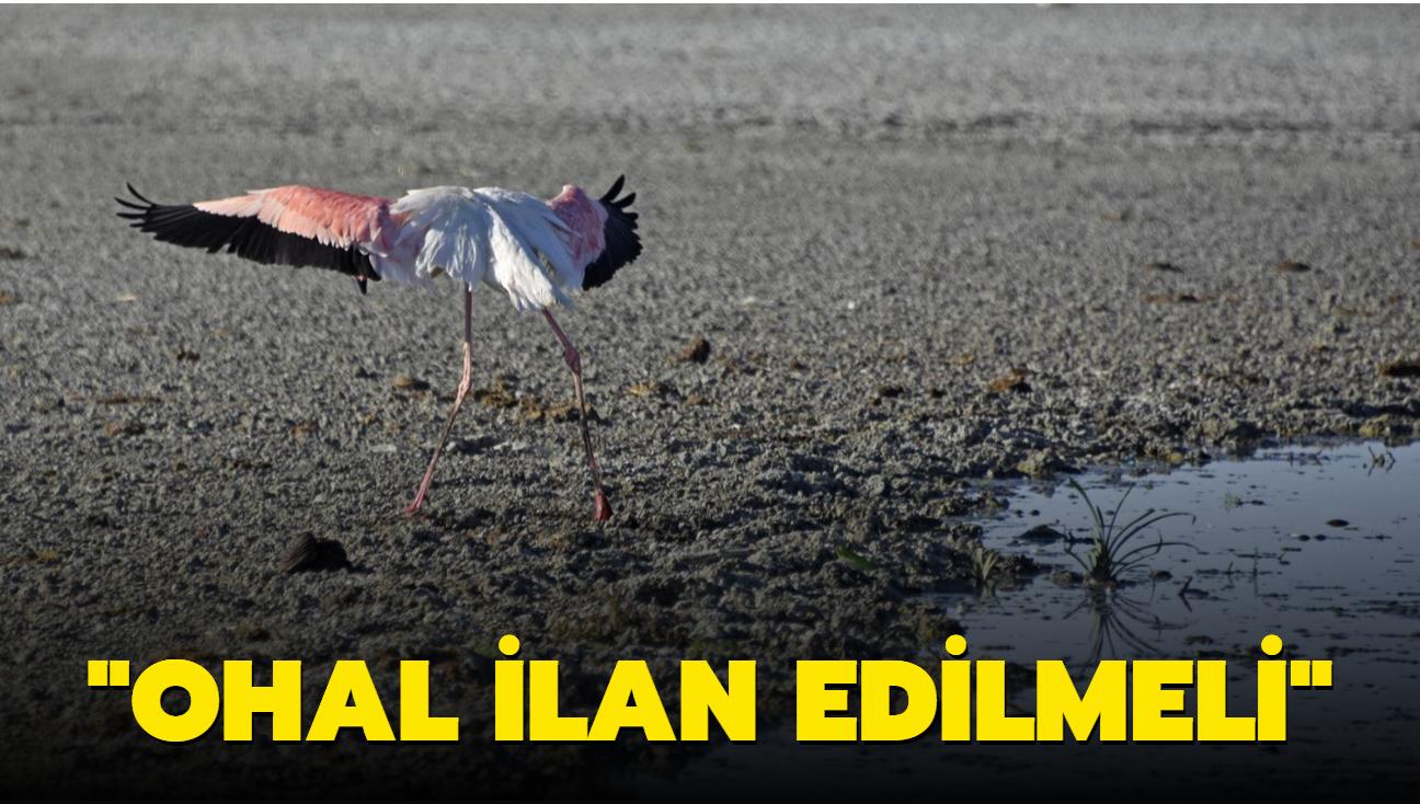 Meteoroloji Uzmanı Dr. Özdemir: Olağanüstü hal ilan edilmeli
