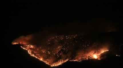 Antalya'dan sonra 4 ilde orman yangınları