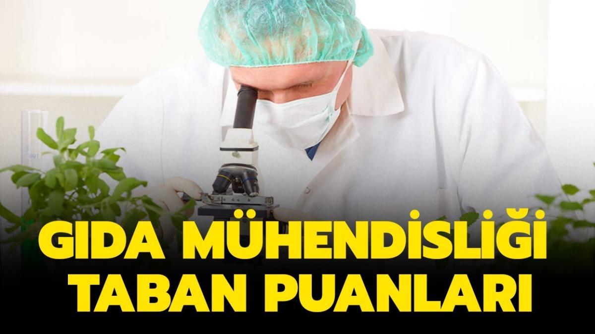 """Gıda Mühendisliği taban puanları ve başarı sıralamaları listesi! Gıda Mühendisliği 2021 taban puanları açıklandı mı"""""""