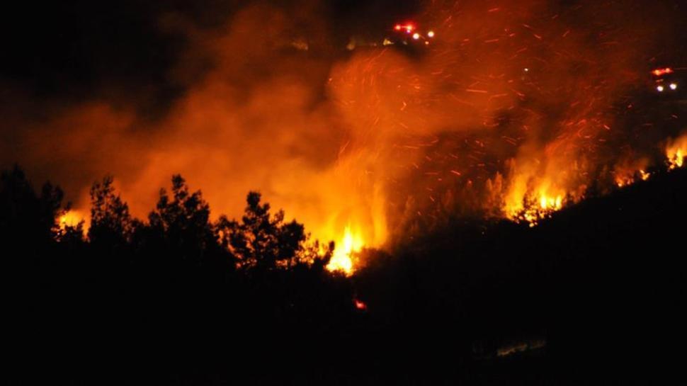 Terör şüphesi! Türkiye'nin ormanlarını kim yakıyor?