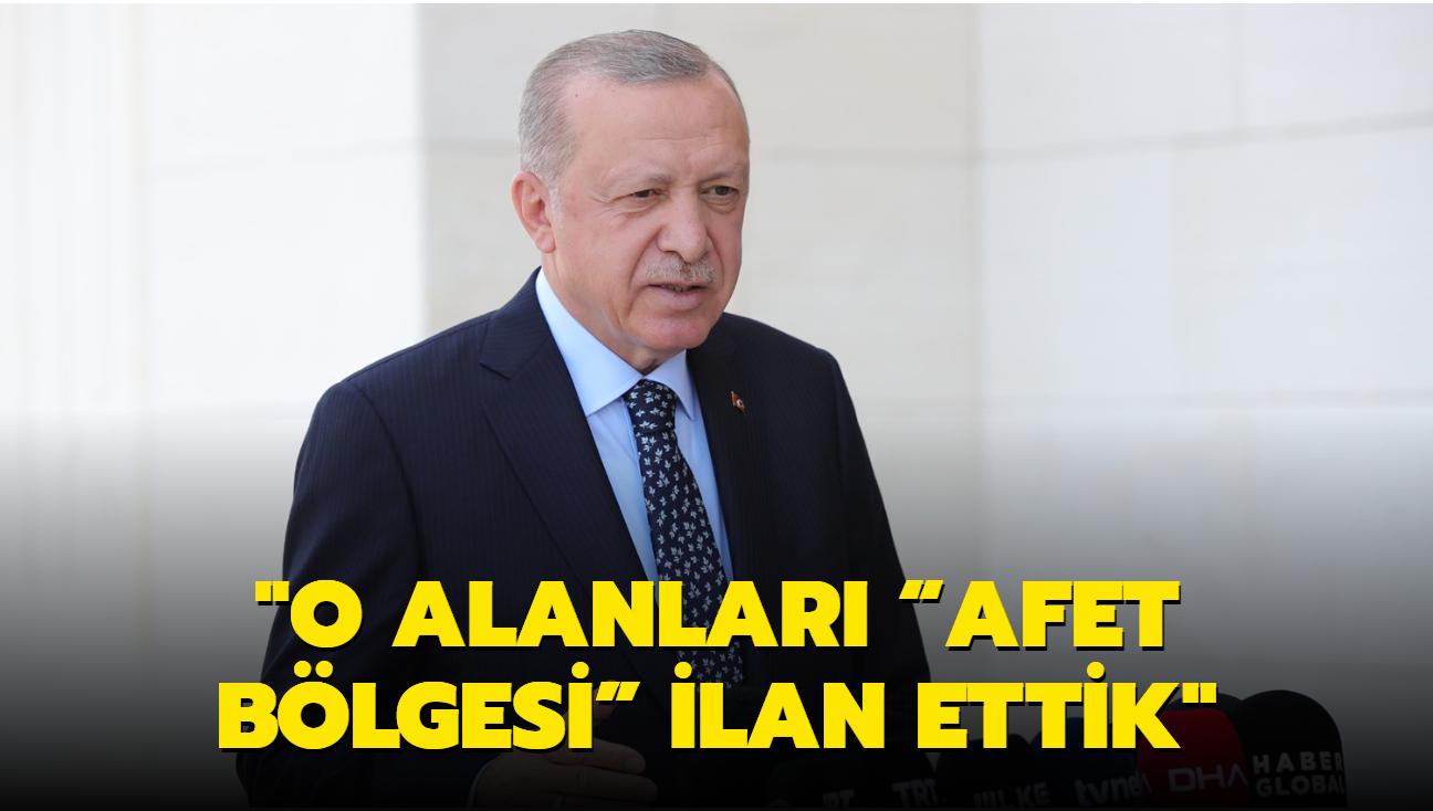 """Başkan Erdoğan: Yangından etkilenen bölgelerimizi """"Afet Bölgesi"""" ilan ettik"""