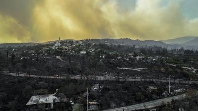 Son dakika haberi: Bakan Pakdemirli'den orman yangınlarına ilişkin önemli açıklama
