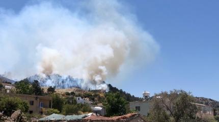 Kıbrıs'ta orman yangını