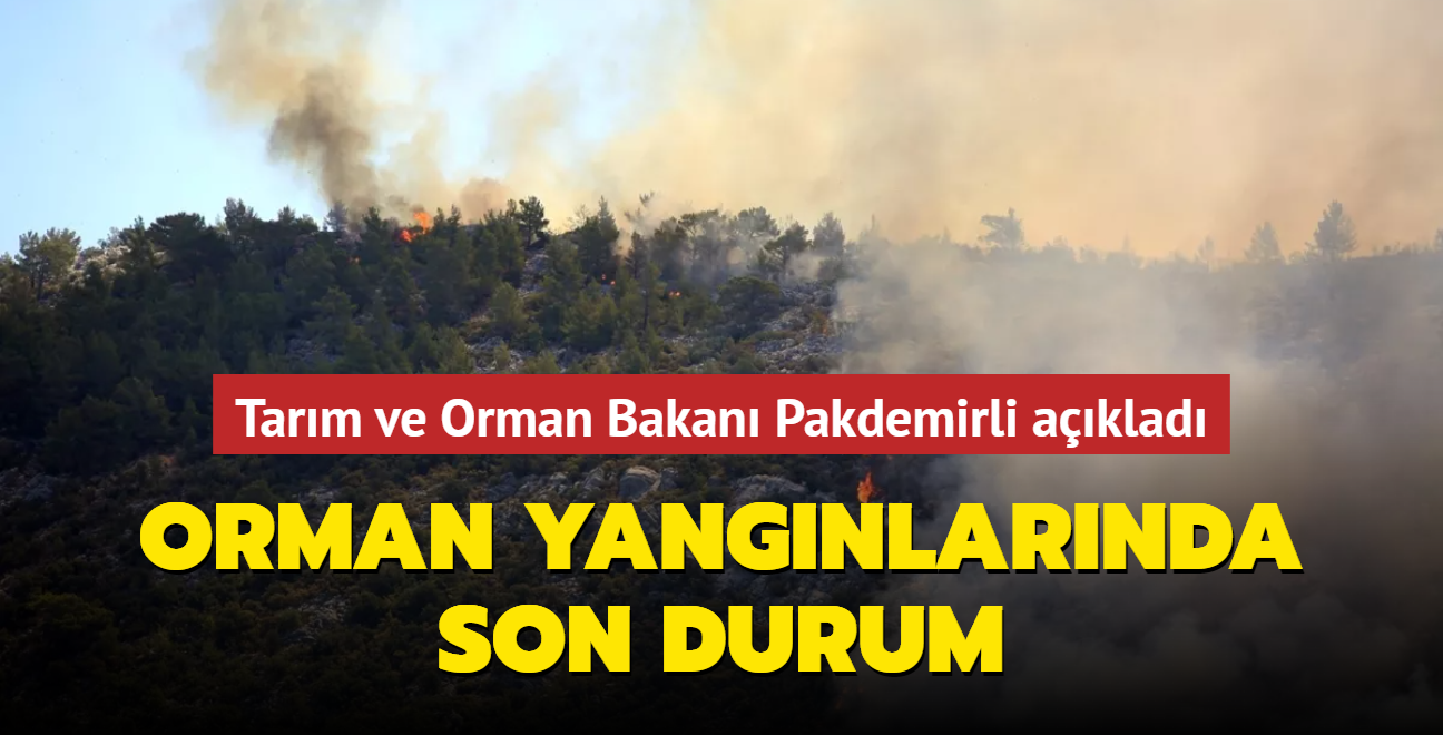 Tarım ve Orman Bakanı Pakdemirli duyurdu... Orman yangınlarında son durum