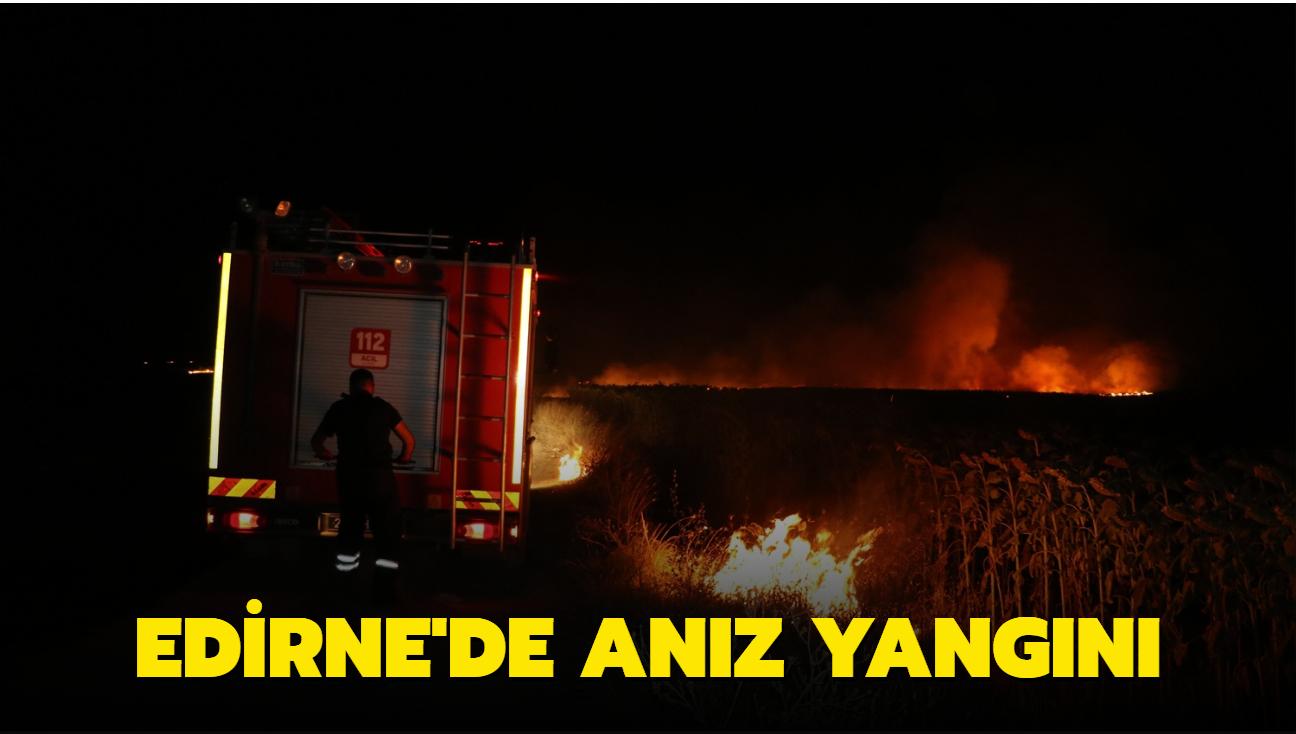 Edirne'de anız yangını... Ayçiçek tarlaları zarar gördü