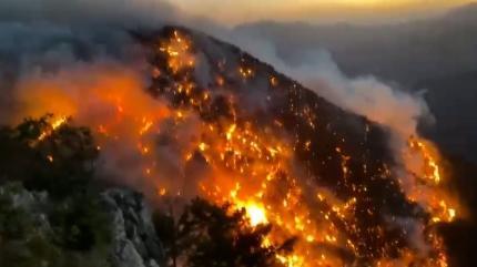 EGM'den sahte 'orman yangını' paylaşımlarıyla ilgili açıklama