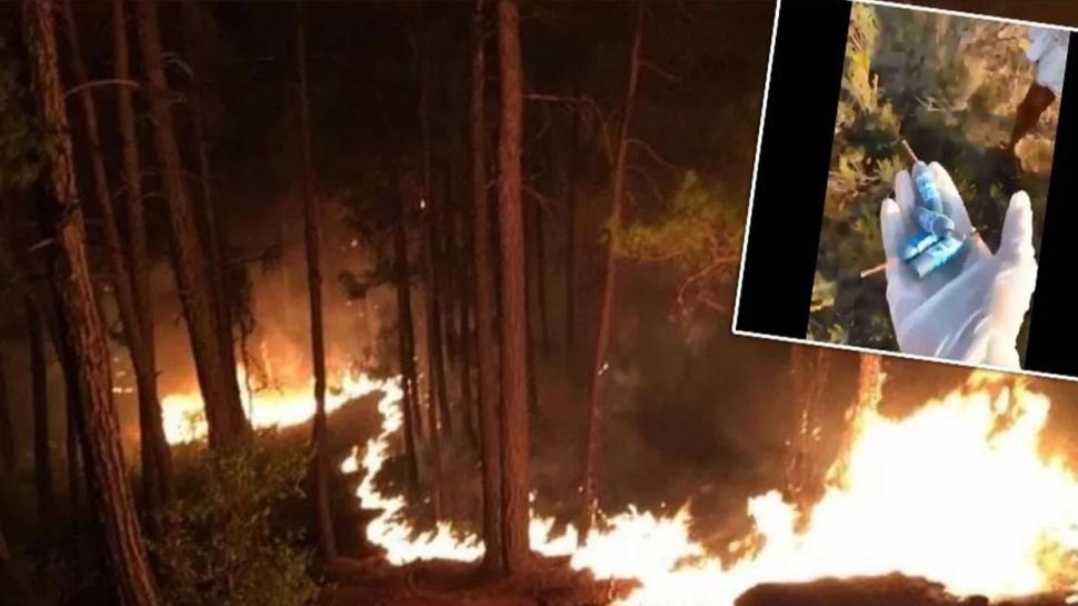 Muğla'da ormanlık alanda onlarca patlamamış torpil bulundu