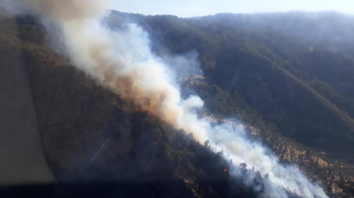 Aydın Bozdoğan'da çıkan yangına müdahaleler sürüyor
