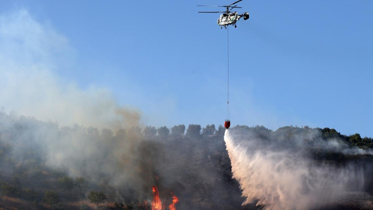 Bursa'nın Mudanya ilçesinde çıkan orman yangını kontrol altına alındı