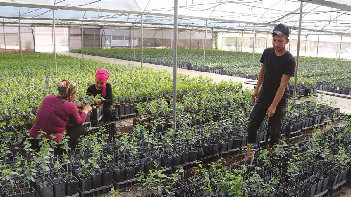 İhracatı artıracak strateji! Tarımsal üretimde 'yeşil dönüşüm'