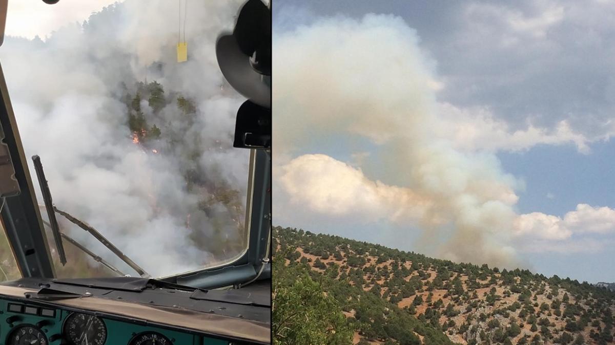 Son dakika haberi: Adana'da korkutan orman yangını