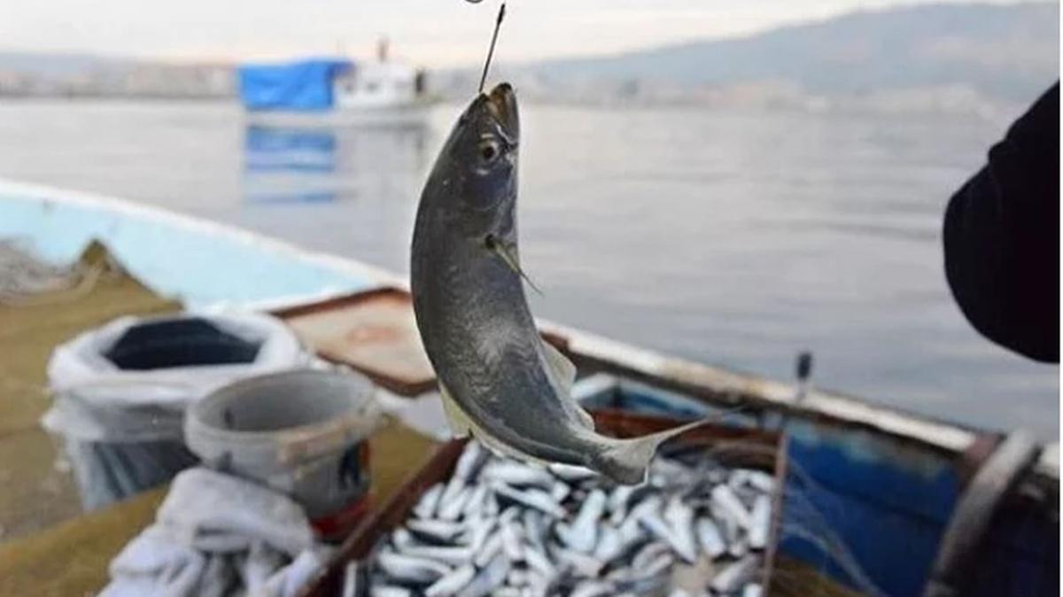 """2021-2022 balık sezonu ne zaman başlıyor"""" Balık av yasağı ne zaman bitiyor"""""""