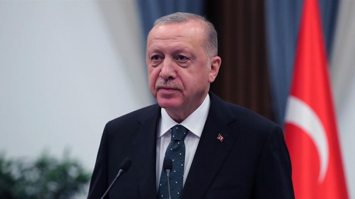 Başkan Erdoğan, Bosna Hersek ve Karadağ'daki resmi ziyaretlerini tamamlayarak yurda döndü
