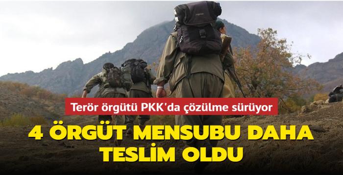 Terör örgütü PKK'da çözülme sürüyor... 4 örgüt mensubu daha teslim oldu