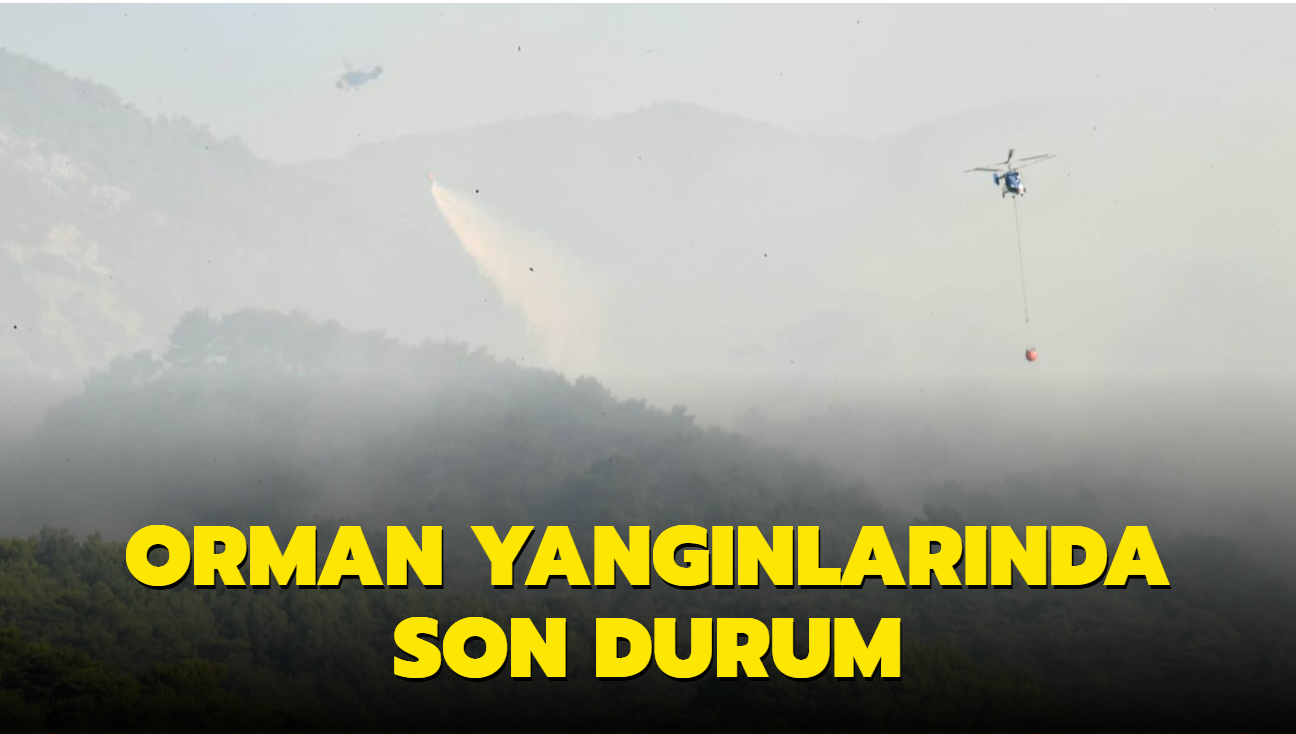 Ülke genelinde orman yangınlarında son durum