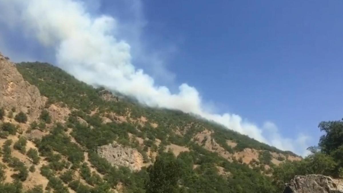Tunceli'deki örtü yangınları kontrol altına alındı