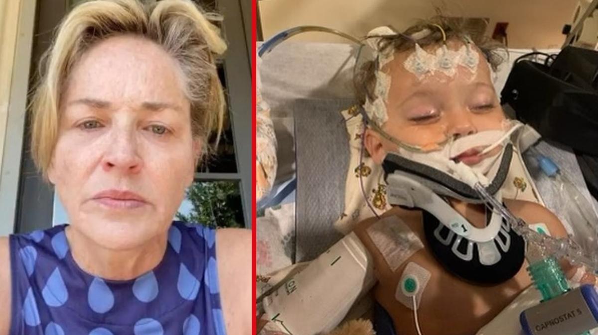 Sharon Stone'un 11 aylık yeğeni çoklu organ yetmezliği nedeniyle hayatını kaybetti
