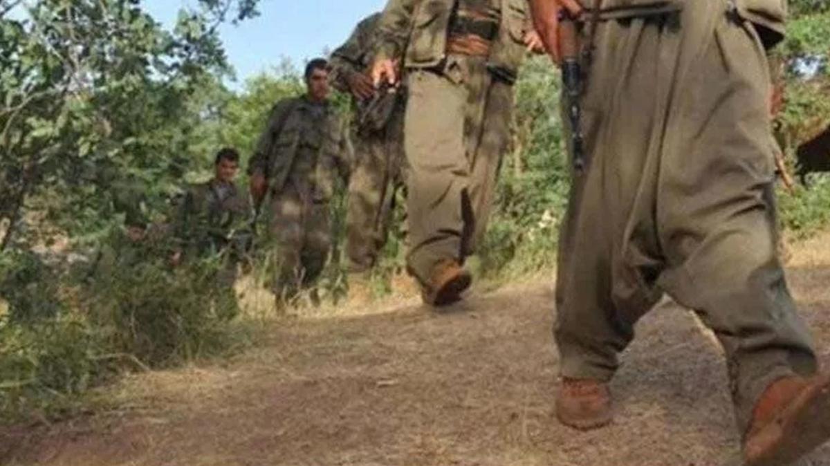 İkna çalışmaları sonucu 5 PKK'lı terörist teslim oldu