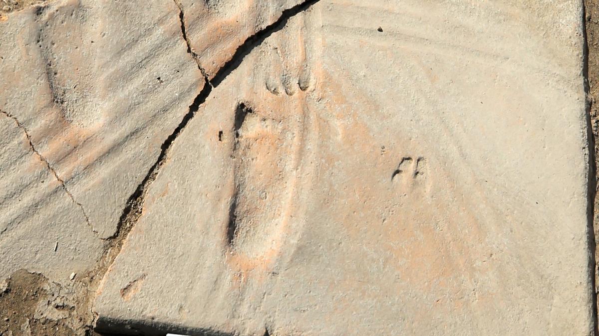 Assos'ta bebeğe ait 1300 yıllık ayak izleri bulundu