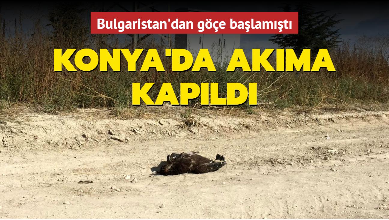Bulgaristan'dan göçe başlamıştı... Konya'da akıma kapıldı