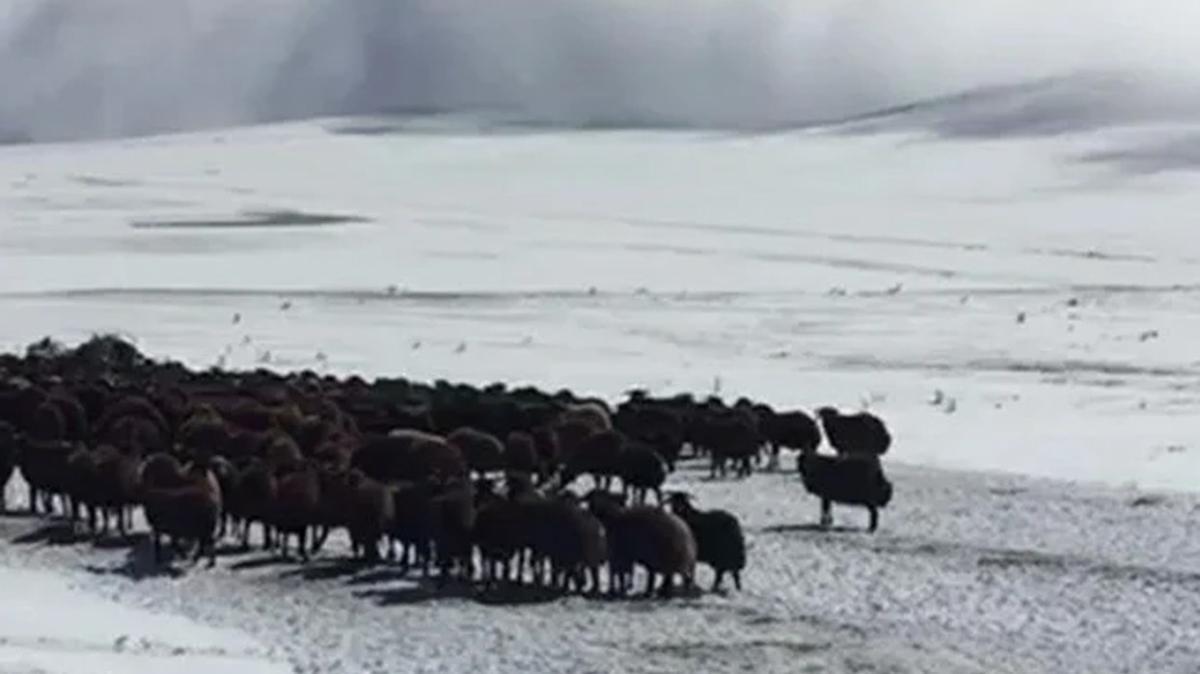 Anadolu'da kar yağışına hazırlıksız yakalandılar