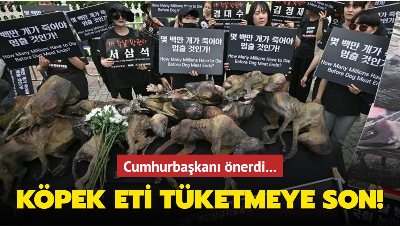 Güney Kore'de köpek eti tüketimine son verilecek