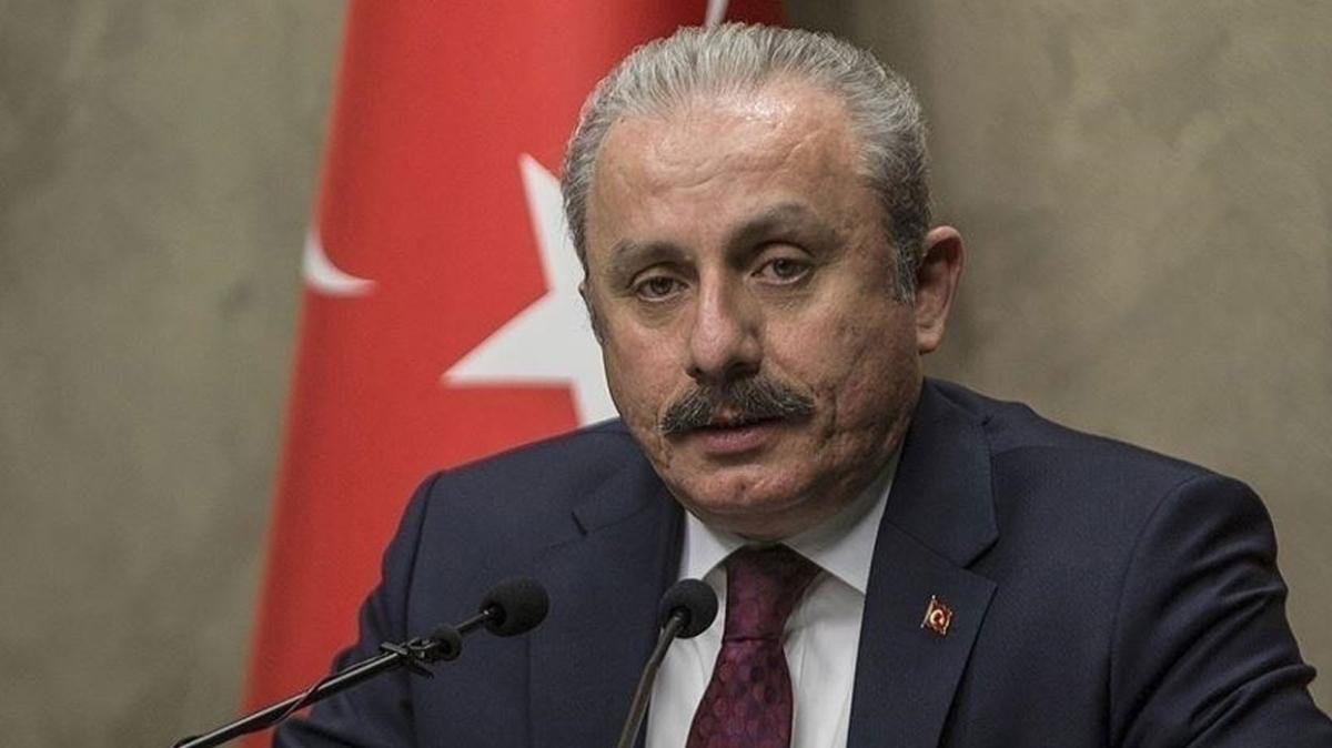 TBMM Başkanı Mustafa Şentop: FETÖ bulunduğu her ülkede güvenlik tehdidi