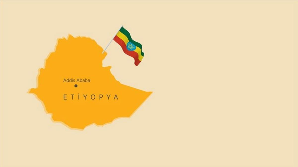"""Etiyopya hükümeti, bazı insani yardım görevlilerini """"istenmeyen kişi"""" ilan etti"""