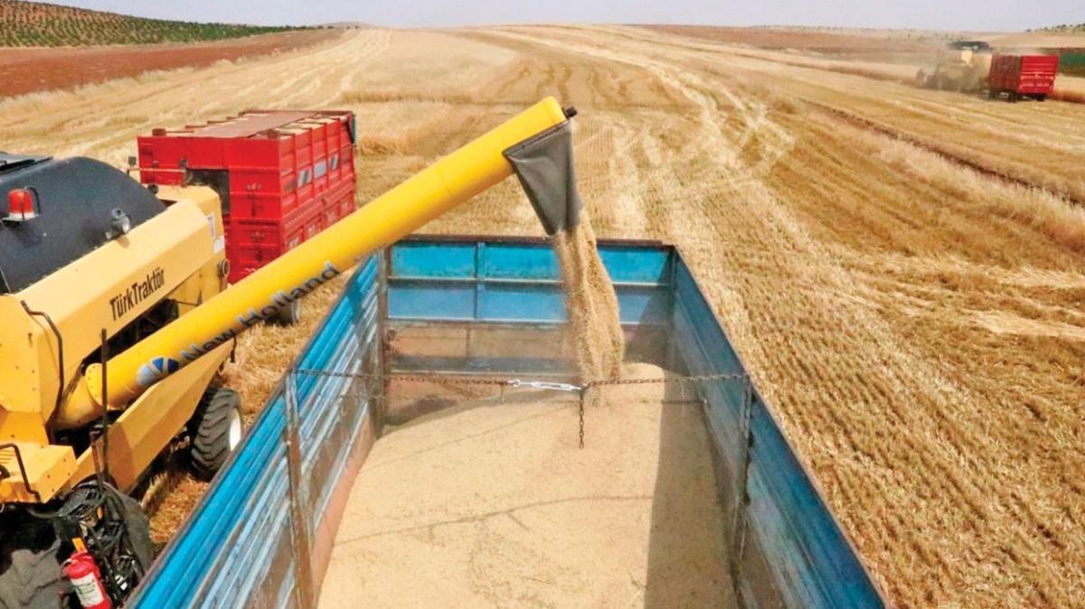 Biyoteknolojik yöntemle tahıl çeşitleri hızla artıyor