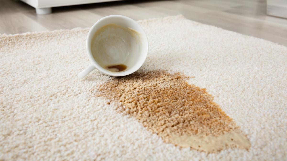 Sadece 3 dakikada halıdaki çay lekesini çıkarın
