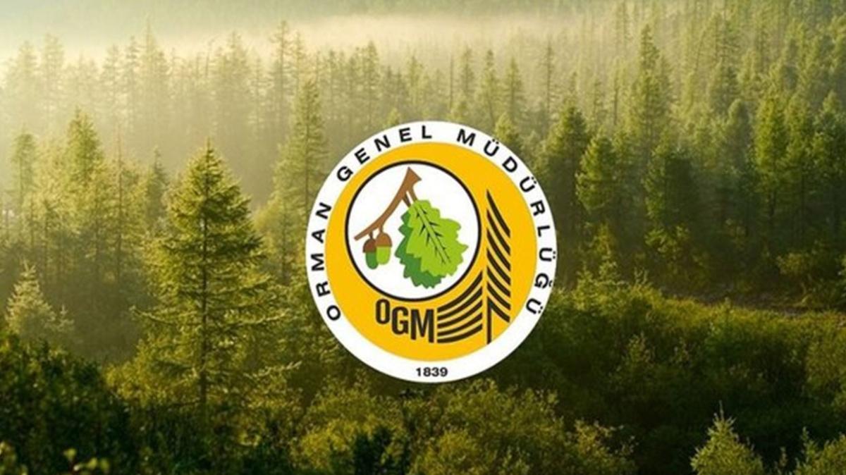 """2021 OGM personel alımı şartları nelerdir"""" OGM personel alımı ne zaman"""""""