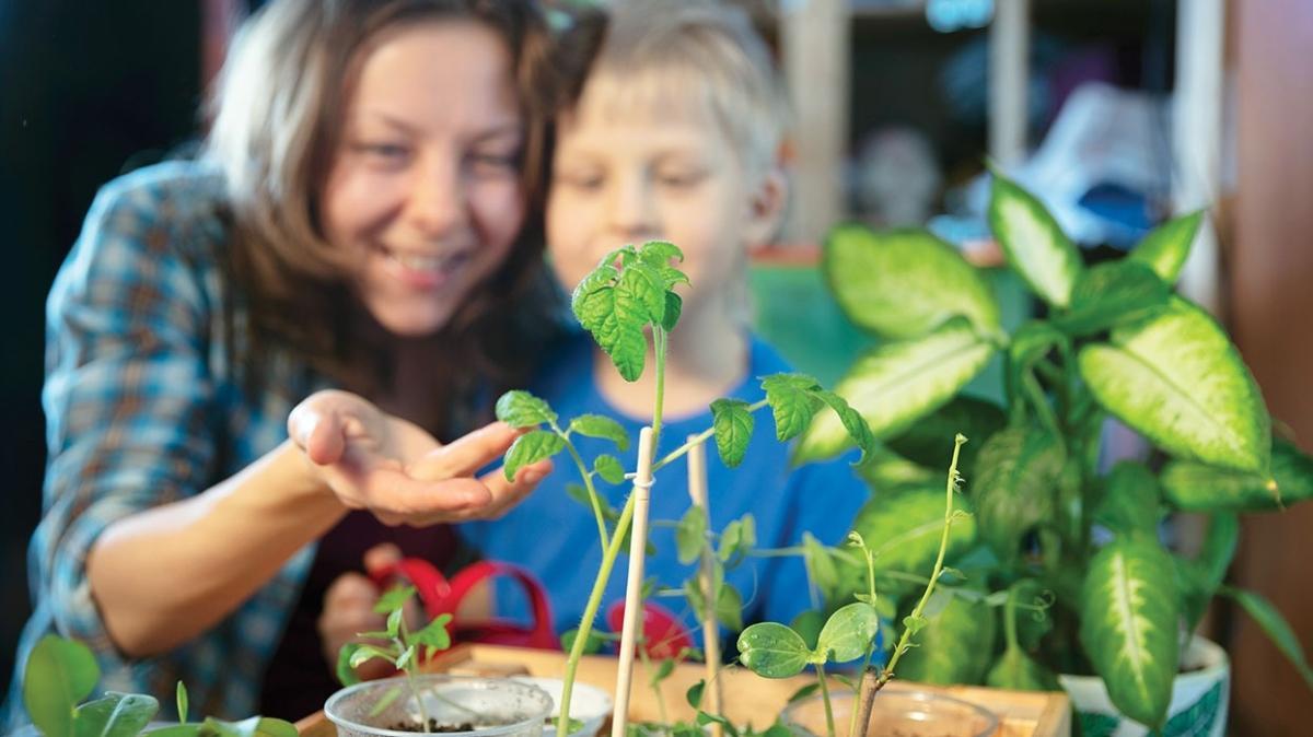 Bitki körlüğü sağlığımızı tehdit ediyor